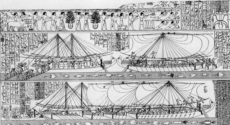 Flota egícia al país de Punt